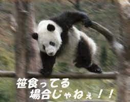 急げ! | 阪神ナウ!阪神沿線クチコミ情報サイト